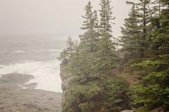 Acadia National Park Stock Photo