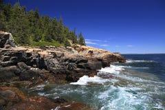 Acadia-Nationalpark, Atlantik-Kante Stockbild