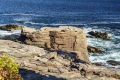 Acadia-Nationalpark im Stangen-Hafen, USA, 2015 Lizenzfreie Stockfotografie