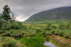 Acadia-Nationalpark-Innenraum Lizenzfreie Stockfotografie