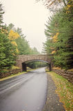 Acadia-Nationalparkbrücke Stockfotografie