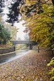 Acadia-Nationalparkbrücke Lizenzfreies Stockfoto