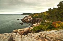 Acadia-Nationalparklaub Stockbild