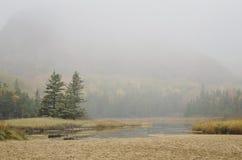 Acadia parka narodowego ul w mgle Zdjęcie Royalty Free