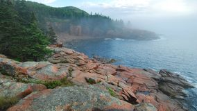 Acadia Summer Dawn. Early summer morning fog on the colorful and scenic Acadia coastline, captured in Acadia National Park in Maine Royalty Free Stock Image