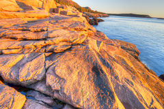 Acadia. Sunrise on the rocky coastline of Maine, in Acadia National Park, New England area of the USA Royalty Free Stock Photos