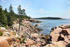 Acadian coast. Acadia rocky coast in Maine with blue sky Stock Photos
