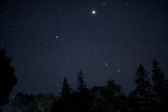 Acadian gwiazdy Zdjęcia Royalty Free