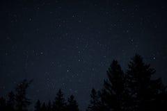 Acadian gwiazdy Obrazy Stock
