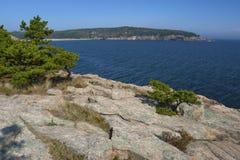 Acadianationalpark Arkivfoto