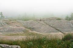Acadianationalpark dimma arkivbild