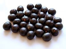 Acai Stock Photography
