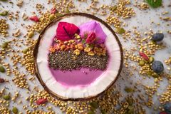 Acai bowl smoothie inside coconut chia granola. Blueberry and pitaya dragon fruit Royalty Free Stock Photography