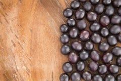 Acai-Frucht - Euterpe oleracea Lizenzfreie Stockbilder