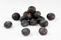 Acai Fruit Berries. Acai, the small superfruit from the brazilian amazon, very rich in naturally nutrients and antioxidants Royalty Free Stock Images