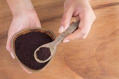 Acai powder in bowl between hands - Euterpe oleracea Royalty Free Stock Photography