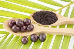 Acai powder - Euterpe oleracea Royalty Free Stock Images