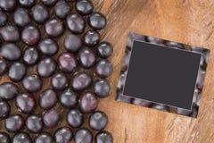 Acai fruit - Euterpe oleracea Royalty Free Stock Image