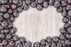 Acai fruit - Euterpe oleracea Royalty Free Stock Images