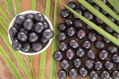 Acai fruit - Euterpe oleracea Stock Photography