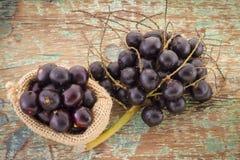 Acai frukt- och pulverEuterpeoleracea arkivfoto