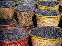 Free Acai In Baskets Royalty Free Stock Photos - 8981188