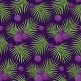 Acai jagod bezszwowy wzór royalty ilustracja