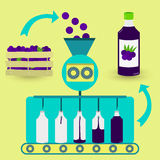 Acai juice fabrication process Stock Image