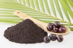 Acai powder - Euterpe oleracea Stock Photo