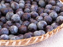 Acai seeds Stock Images