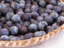 Acai seeds. Berries - Amazonia - Brazil Stock Images