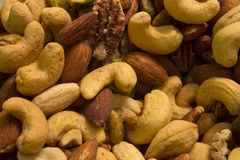 Acajoubäume, Mandeln, Pistazien und Pekannüsse Lizenzfreies Stockfoto