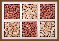 Acajoubäume und Erdnüsse Lizenzfreie Stockfotografie