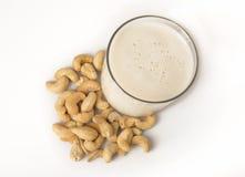 Acajoubaum-Milch - obenliegend Lizenzfreies Stockfoto