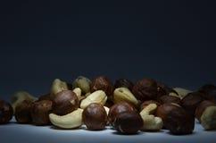 Acajoubaum und Haselnüsse auf einem weißen Hintergrund Stockfoto