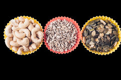 Acajoubaum und Samen in den Muffinformwannen Lizenzfreie Stockfotos