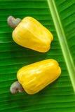 Acajounussfrüchte auf dem grünen Blatt Stockfotos