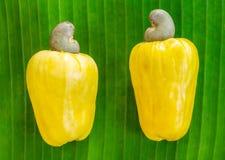 Acajounussfrüchte auf dem grünen Blatt Stockfoto