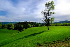 Acalmando a paisagem de Styrian foto de stock
