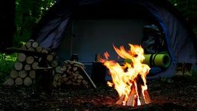 Acampamento com fogo vídeos de arquivo