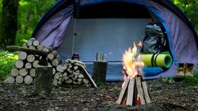 Acampamento com fogo na noite na região selvagem video estoque