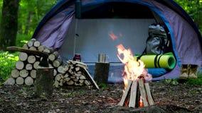 Acampamento com fogo na noite na região selvagem filme