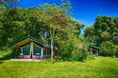 acampamento da barraca em Kenya Fotos de Stock