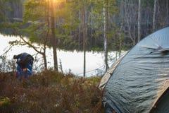 Acampamento da barraca na floresta Foto de Stock