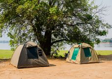 Acampamento da barraca no savana no lago de Zimbabwe, África do Sul imagem de stock
