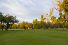 Acampamento do golfe Imagens de Stock