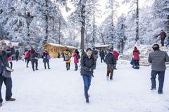 1 acampamento em Hailuogou Imagens de Stock Royalty Free