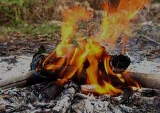 Acampamento exterior do fogo imagem de stock royalty free