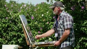 Acampamento internacional da pintura no delta de Danúbio vídeos de arquivo