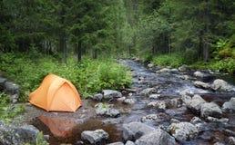 Acampamento na floresta fotos de stock